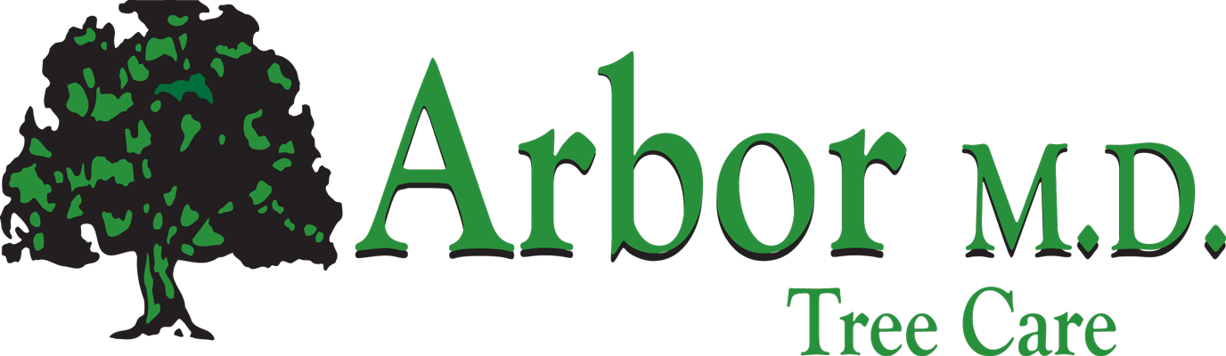 Arbor MD Tree Care